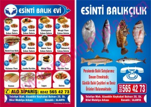 ESİNTİ BALIK el ilanı